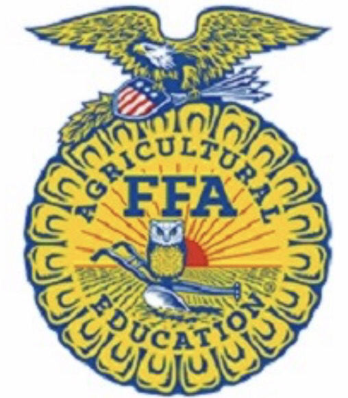 FFA SECTIONAL SPEECH CONTEST