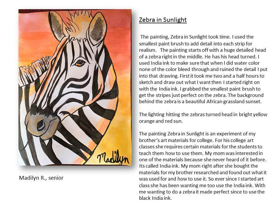 Zebra in Sunlight- Madilyn