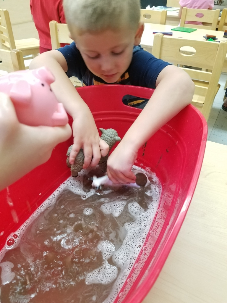 animal mud washing