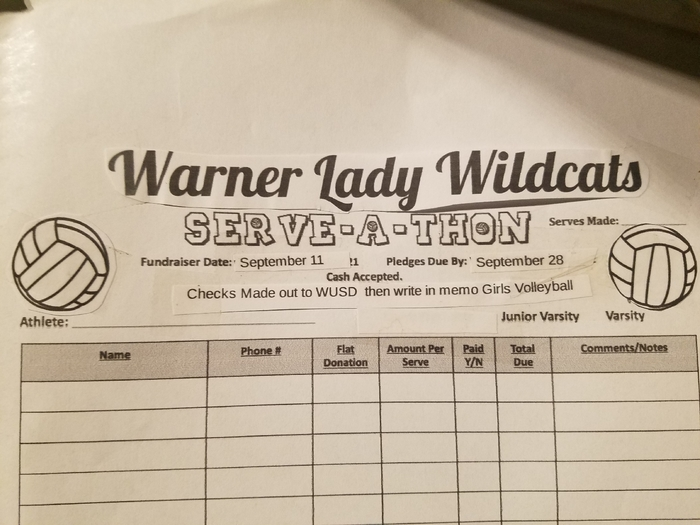 donate to volleyball