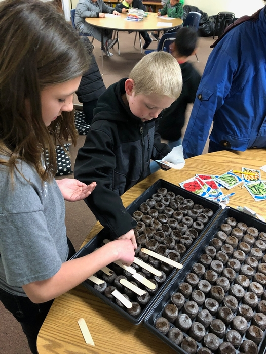 Planting 100 seeds!