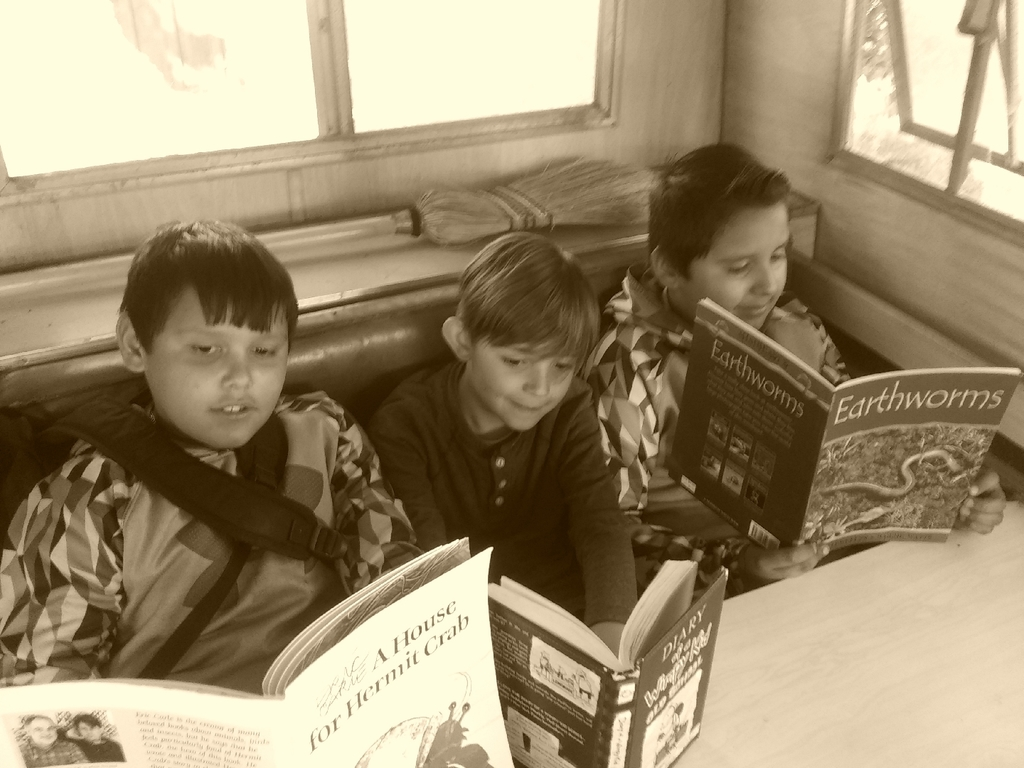 Reading in the 1959 camper truck