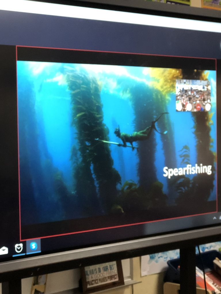 Spear fishing is allowed in the MPA (Marine protected Areas)