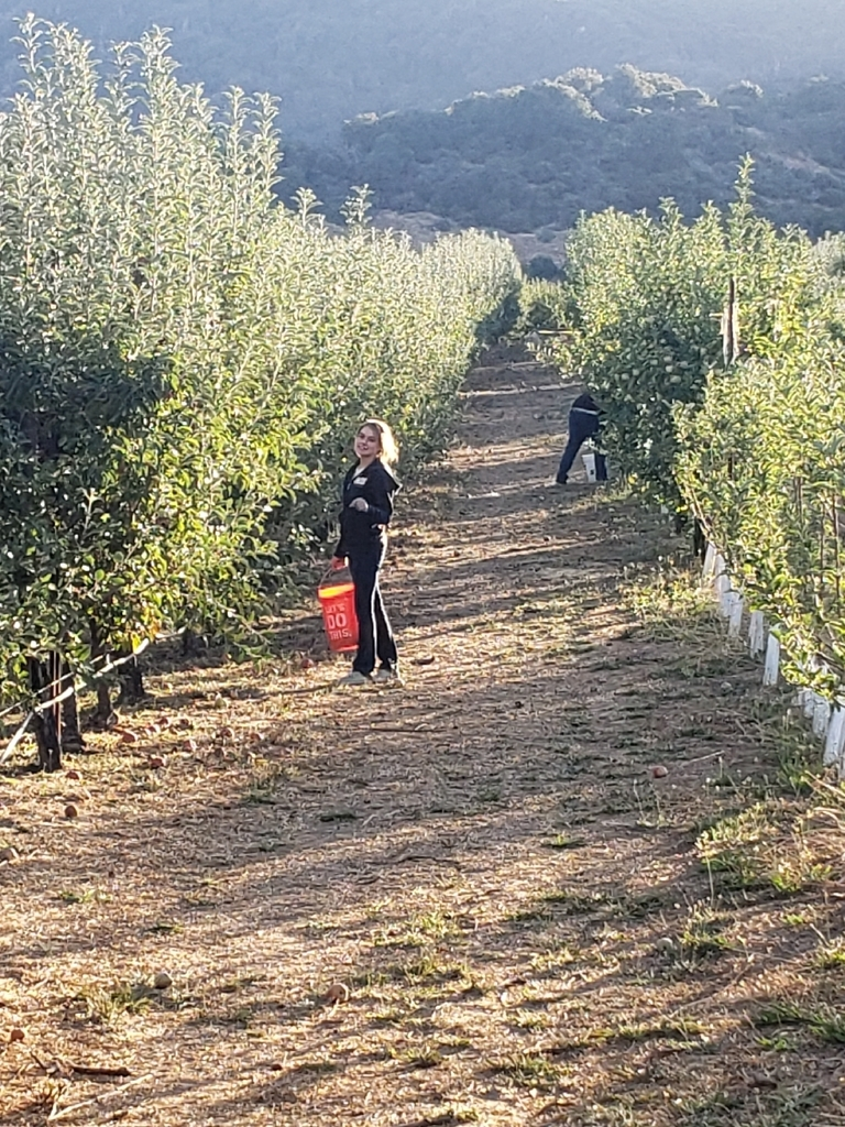 Nikki D. and Tyler S. working down the line finding good apples
