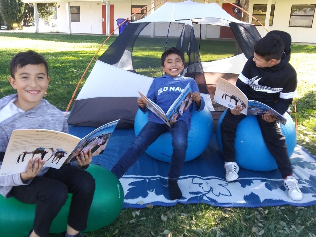 The Reading Tent