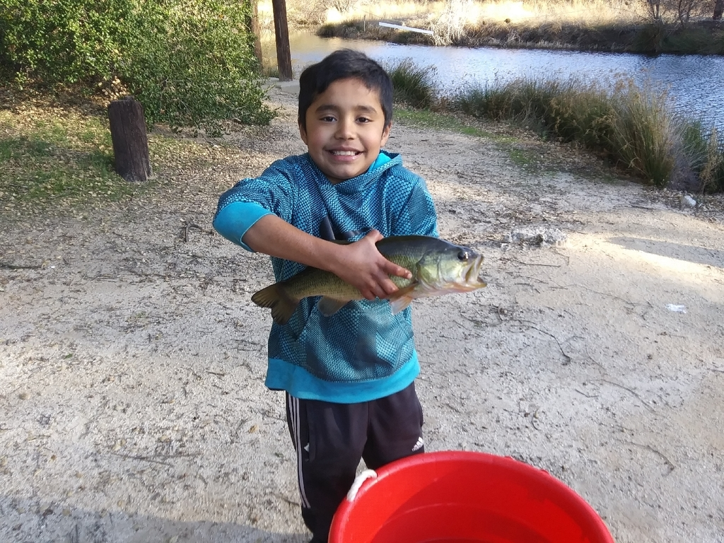 He caught this fish all by himself!