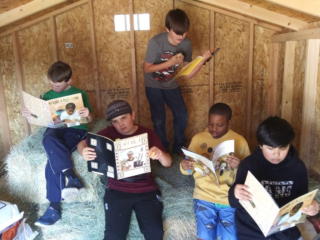 Reading in the hay bale shed.